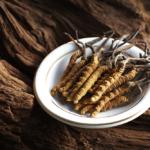 冬蟲夏草真的是蟲嗎?冬蟲夏草功效大公開!