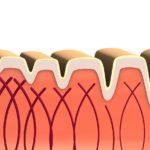 膠原蛋白是什麼?膠原蛋白的成分可以讓肌膚恢復年輕活力