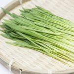 大麥若葉是什麼?大麥若葉青汁真的可以減肥嗎?