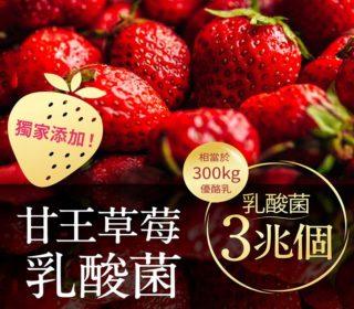 兆活果實 甘王草莓乳酸菌